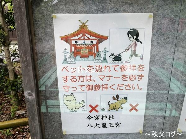 秩父今宮神社は犬などのペット連れOK